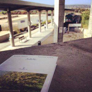 Adele, romanzo di Susanna Trossero e Francesco Tassiello